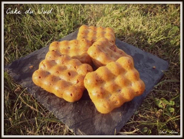 cake-du-sud
